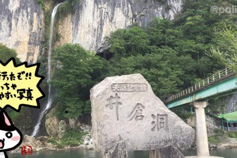 鍾乳洞「井倉洞」(岡山県新見市)|アーティスト・デートおすすめスポット
