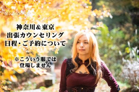 【満席!】12月10日(火)&11日(水)神奈川&東京出張カウンセリングします