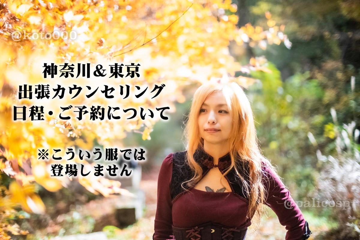 巴写真-神奈川&東京出張カウンセリングお知らせ