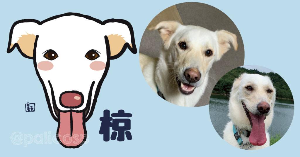 犬似顔絵イラスト 椋