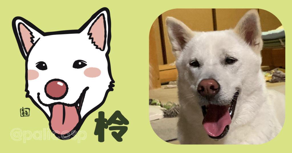 犬似顔絵イラスト 柃