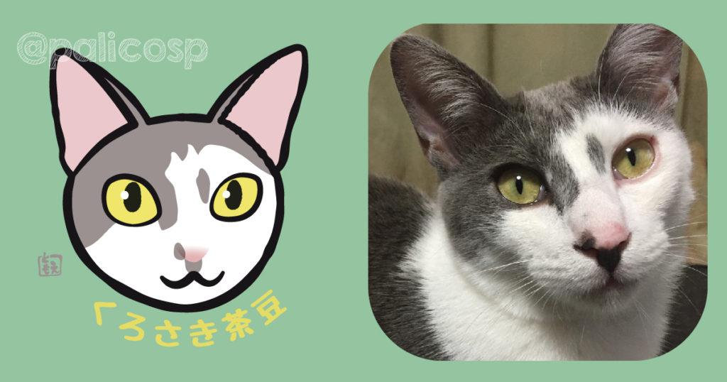 ネコ似顔絵イラスト くろさき茶豆