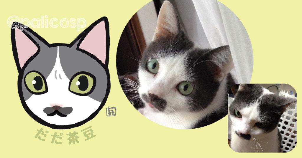 ネコ似顔絵イラスト だだ茶豆